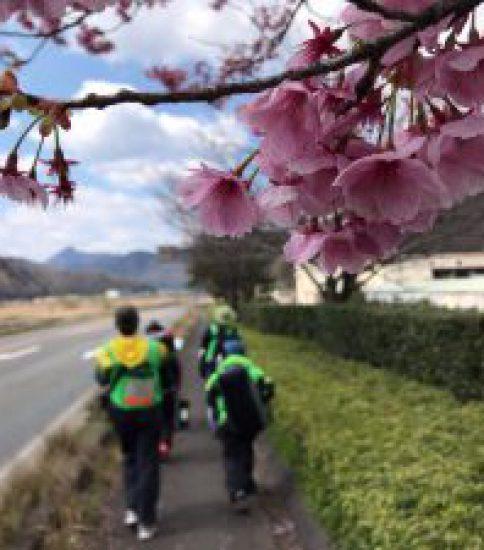 【速報】第19回兵庫県徒歩縦断チャレンジウォーク